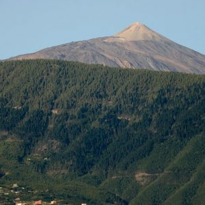 MTB Bike Tour Tenerife - Cycling Tenerife High Teide