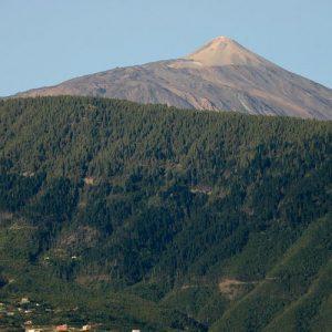 MTB Bike Tour Tenerife - Cycling Tenerife High Teide
